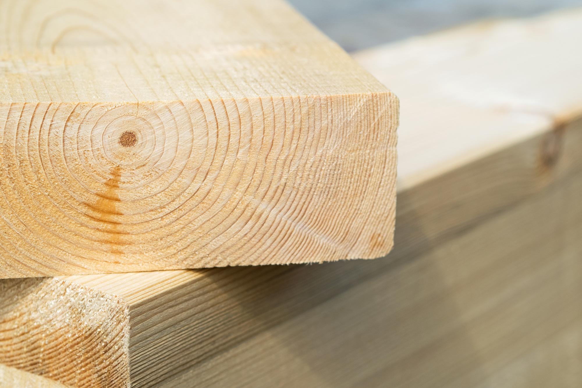 Holz ist der wohl wichtigste Naturbaustoff